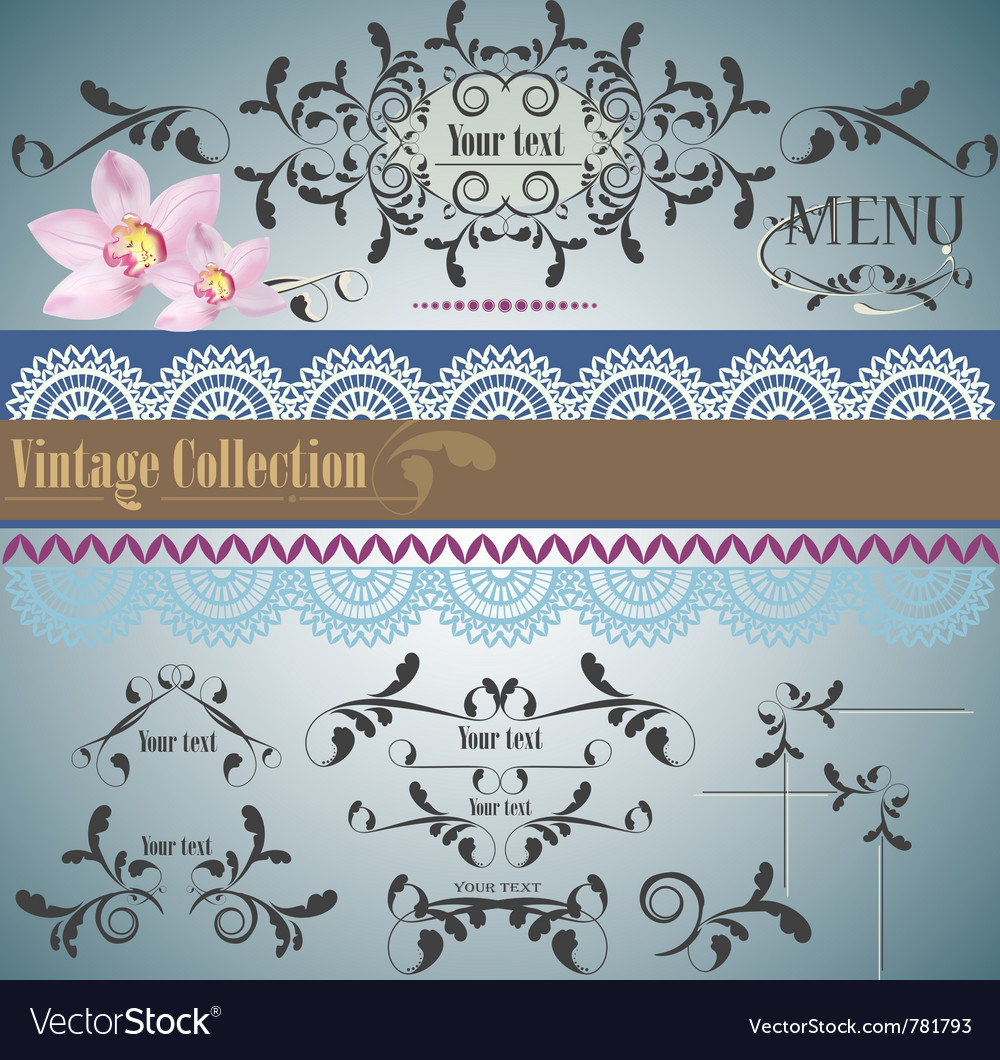 Calligraphic vintage design vector | Price: 1 Credit (USD $1)