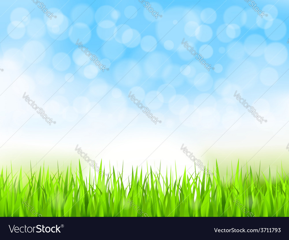 Green grass and blue sky vector | Price: 1 Credit (USD $1)