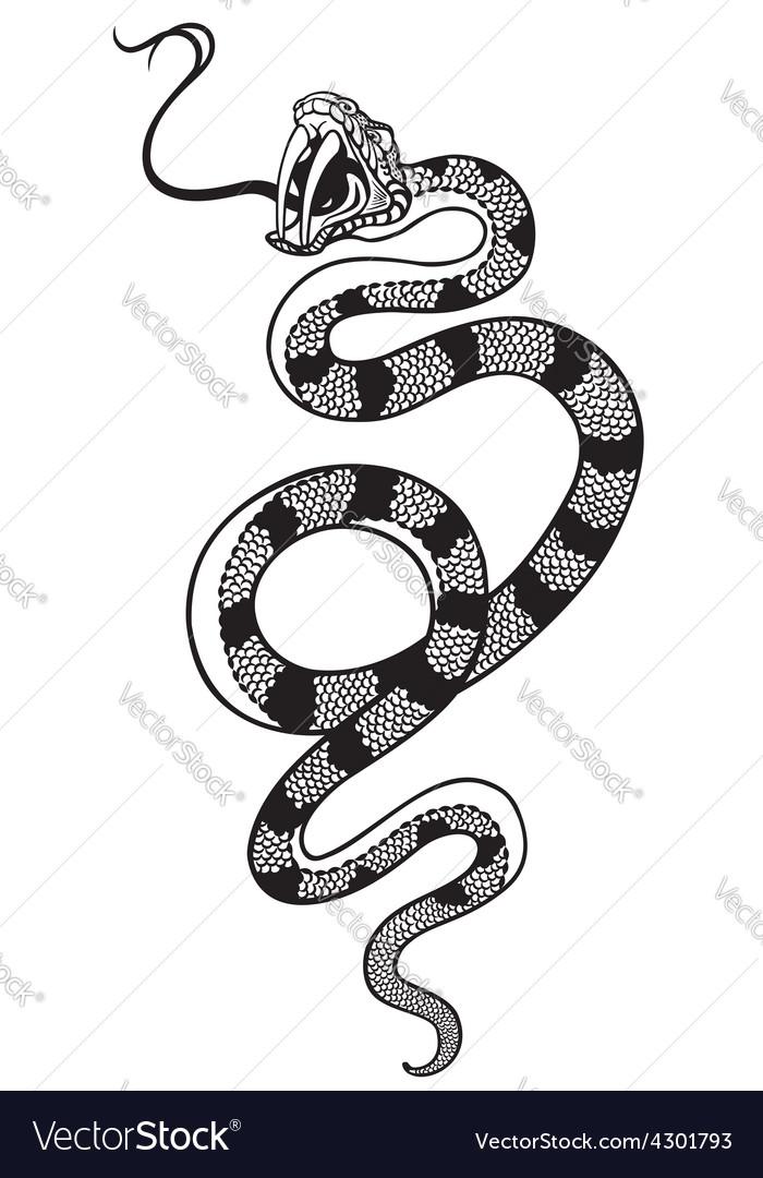 Snake tattoo black white vector | Price: 1 Credit (USD $1)