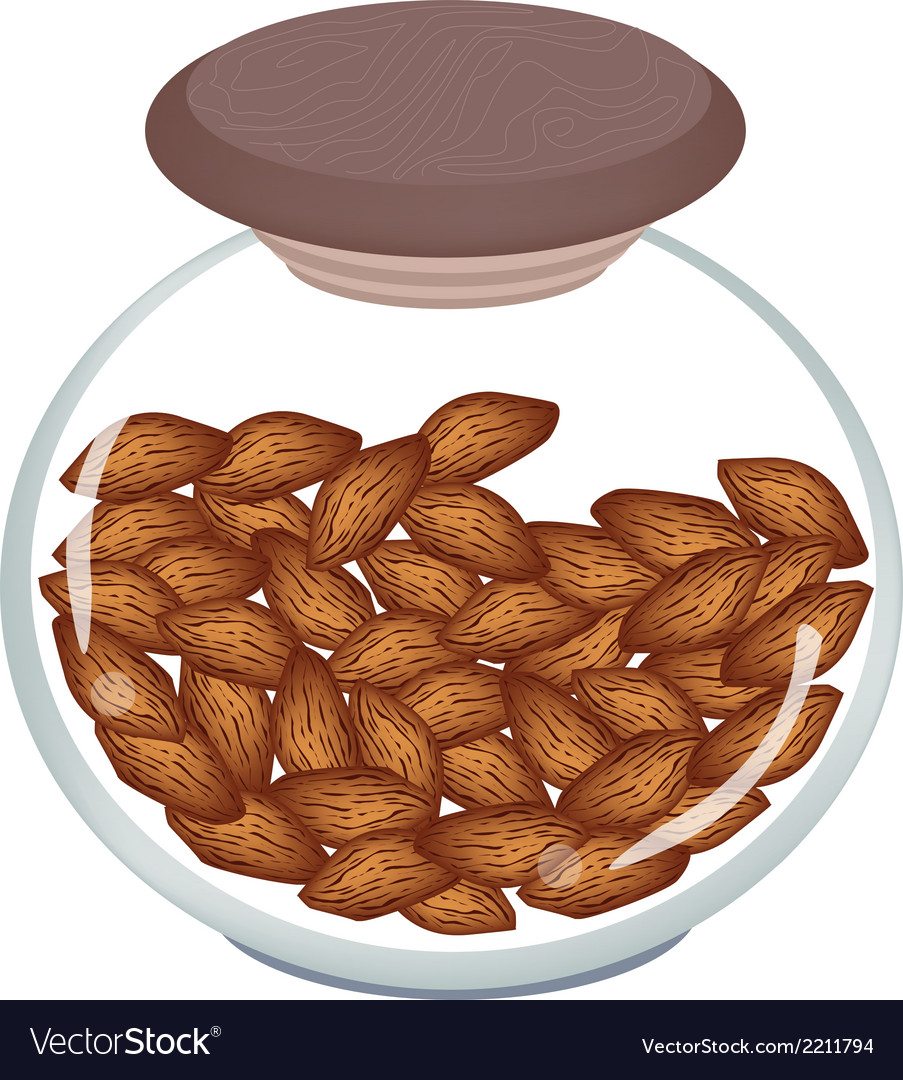 A jar of almonds on white background vector | Price: 1 Credit (USD $1)