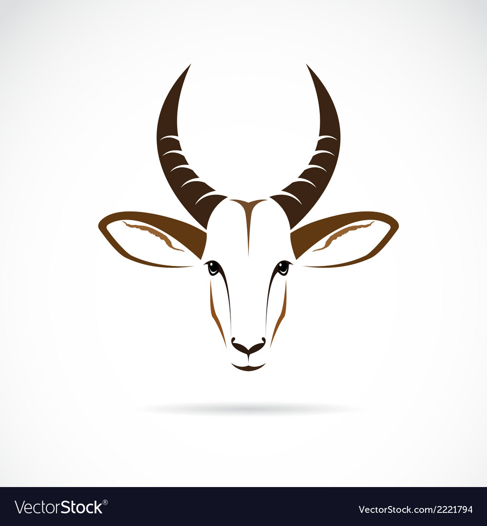 Image of an deer head impala vector | Price: 1 Credit (USD $1)