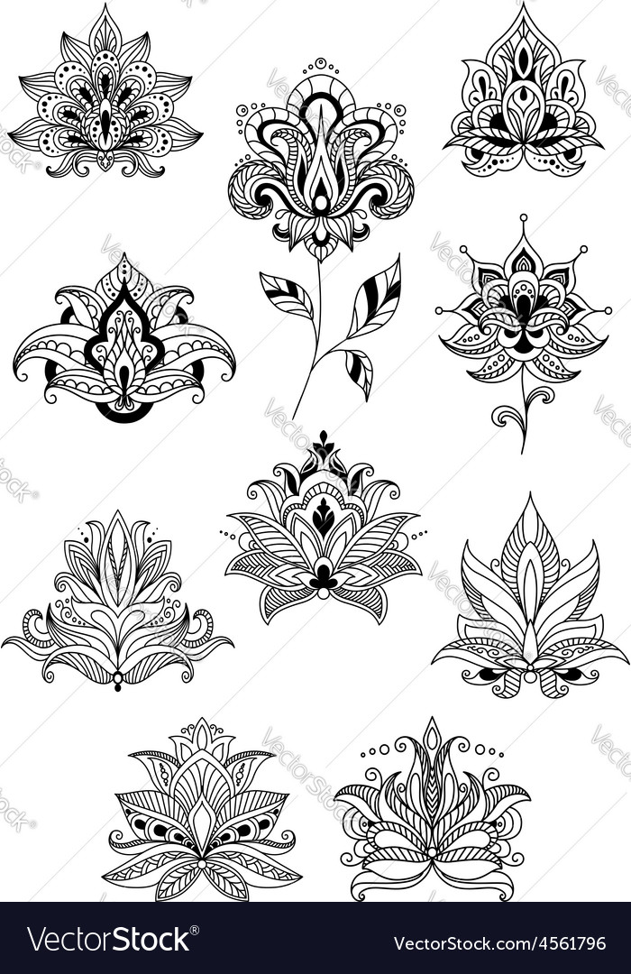Indian persian and turkish paisley flowers vector | Price: 1 Credit (USD $1)