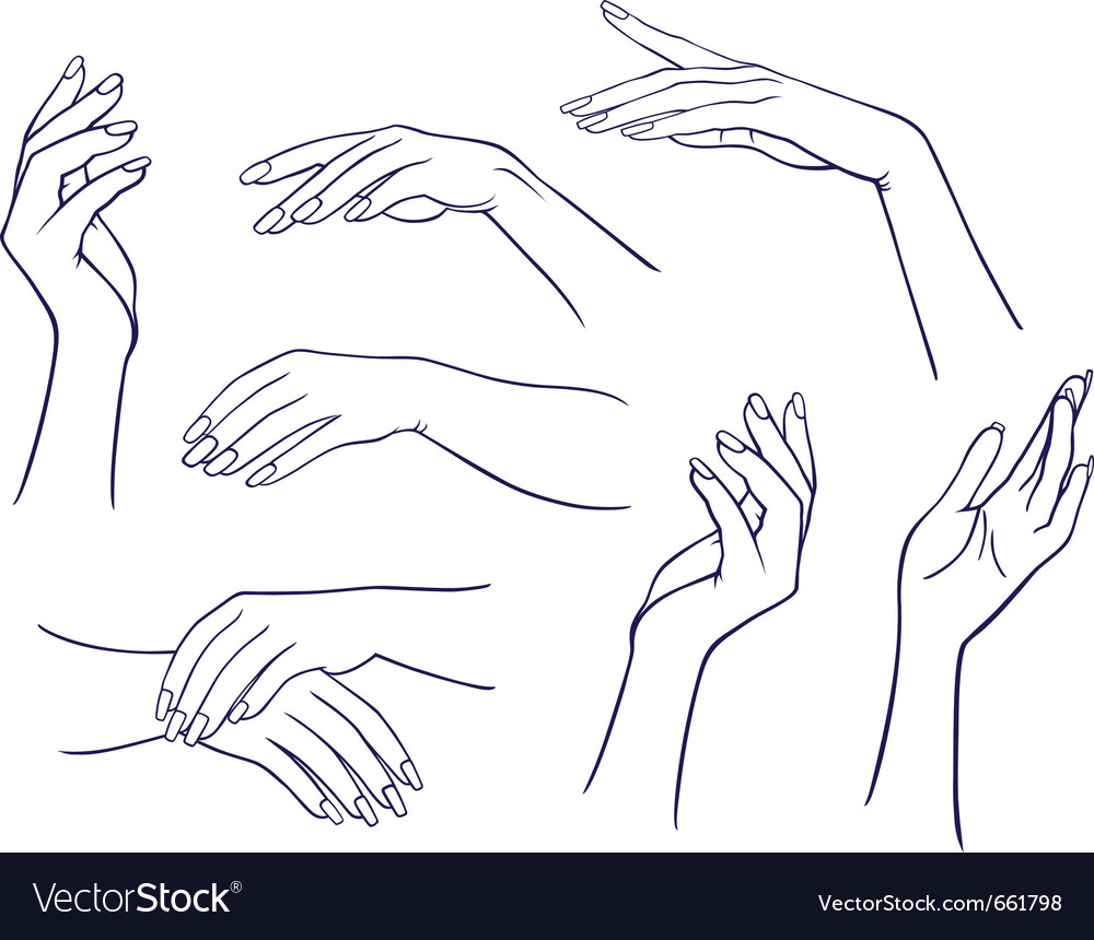Woman hands collection vector | Price: 1 Credit (USD $1)