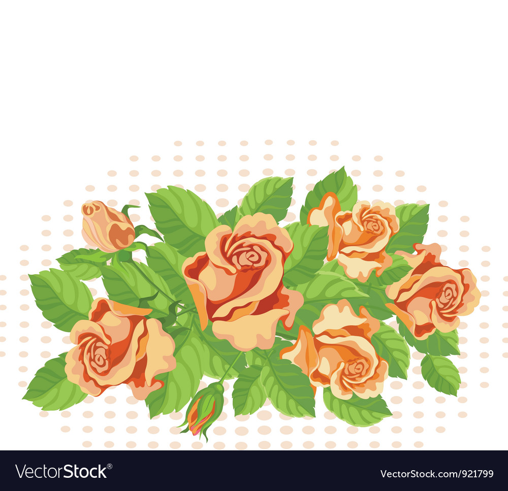 Roses background fine vector | Price: 1 Credit (USD $1)