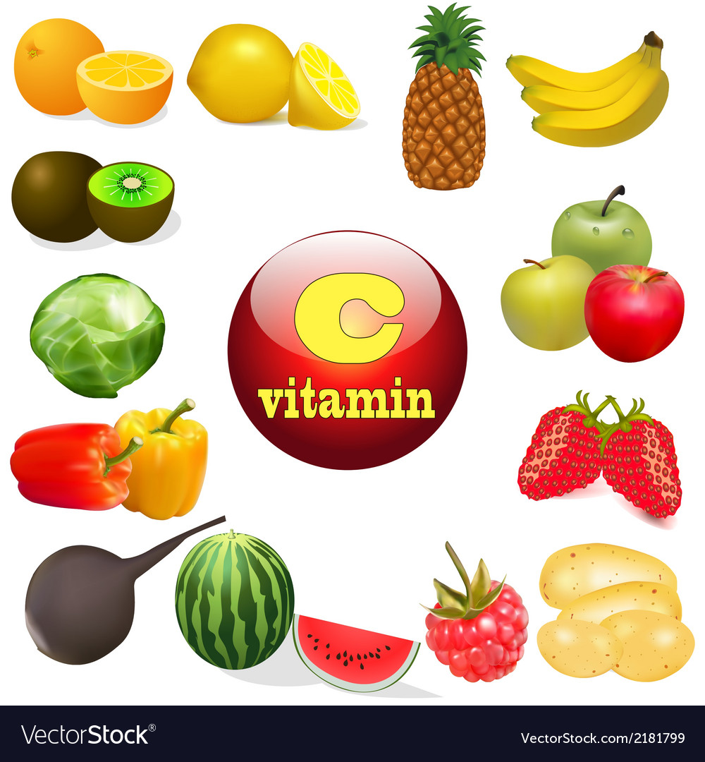 Vitamin c in foods of plant t vector | Price: 1 Credit (USD $1)