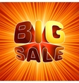 Big sale burst message eps 8 vector