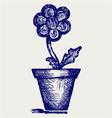 Daisies in pots vector