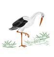 White stork vector