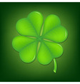 Green clover vector