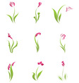 Flower icons set vector