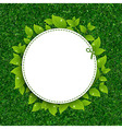 Green grass texture with leaves vector