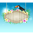 Summer tropical background with toucan vector