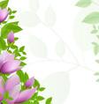Magnolia background vector