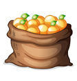 A sack of oranges vector