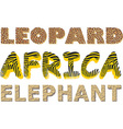 Leopard zebra and elephant texture in the text vector