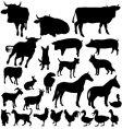 Farm animals vector