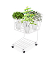 Green trees and plants in shopping cart vector