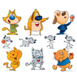 Animal pets collection vector