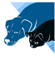 Cat and dog silhouettes corner vector