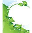 Summer branch with green leaves vector