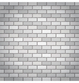 Whtie bricks vector