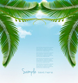 Palm leaves on sky vector