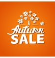 Autumn sale - hand drawn lettering vector