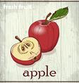 Hand drawing of apple fresh fruit sketch vector