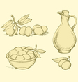 Ripe olives with leaves vector