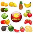 Vitamin c in foods of plant t vector