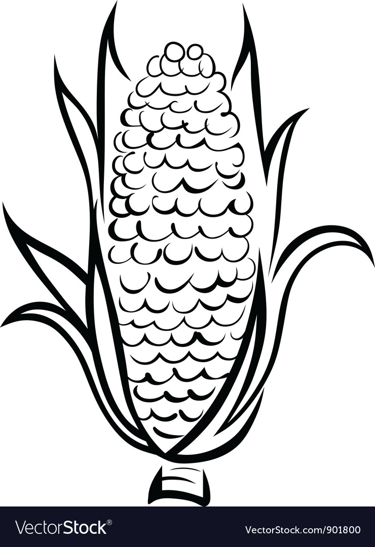 Corn symbol vector | Price: 1 Credit (USD $1)