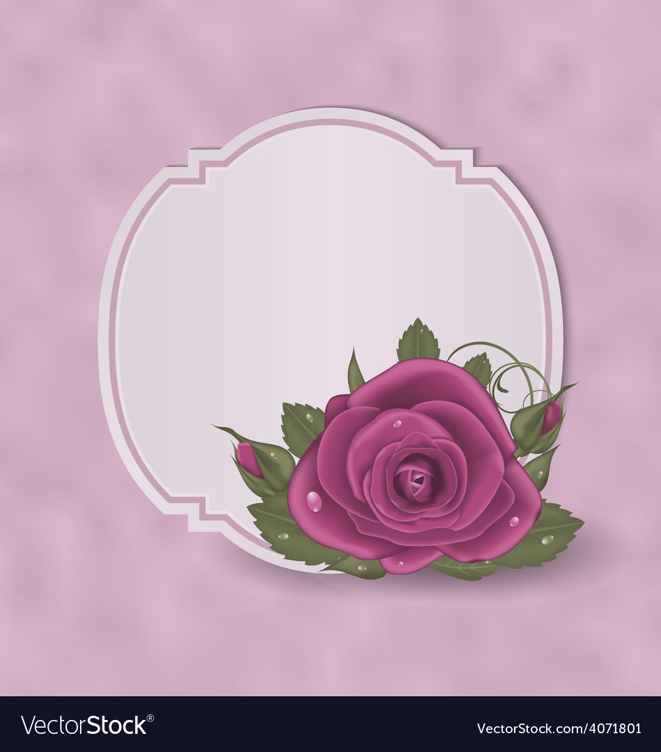 Vintage card with pink roses vector | Price: 1 Credit (USD $1)