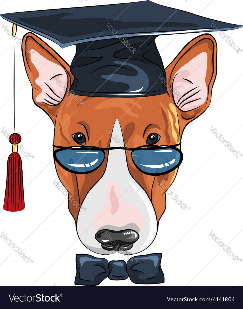 Funny graduated dog bullterrier vector | Price: 1 Credit (USD $1)