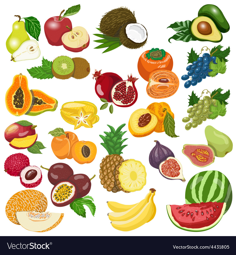 Collection of isolated fruits on white background vector | Price: 1 Credit (USD $1)