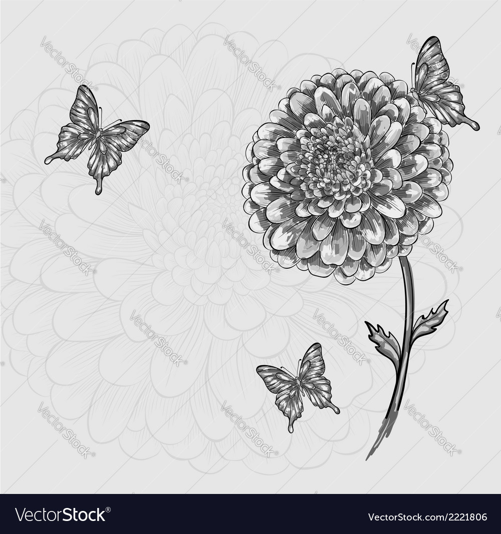 Black-and-white flower with butterflies hand-drawn vector | Price: 1 Credit (USD $1)