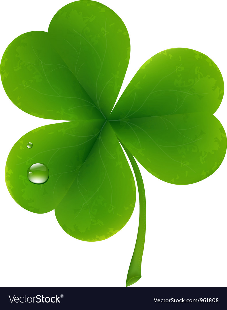 Clover leaf vector | Price: 1 Credit (USD $1)