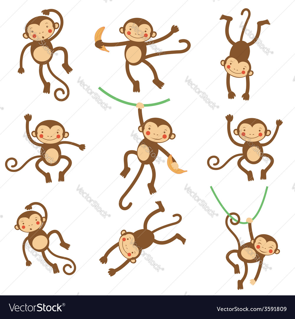 Cute funny monkeys vector | Price: 1 Credit (USD $1)