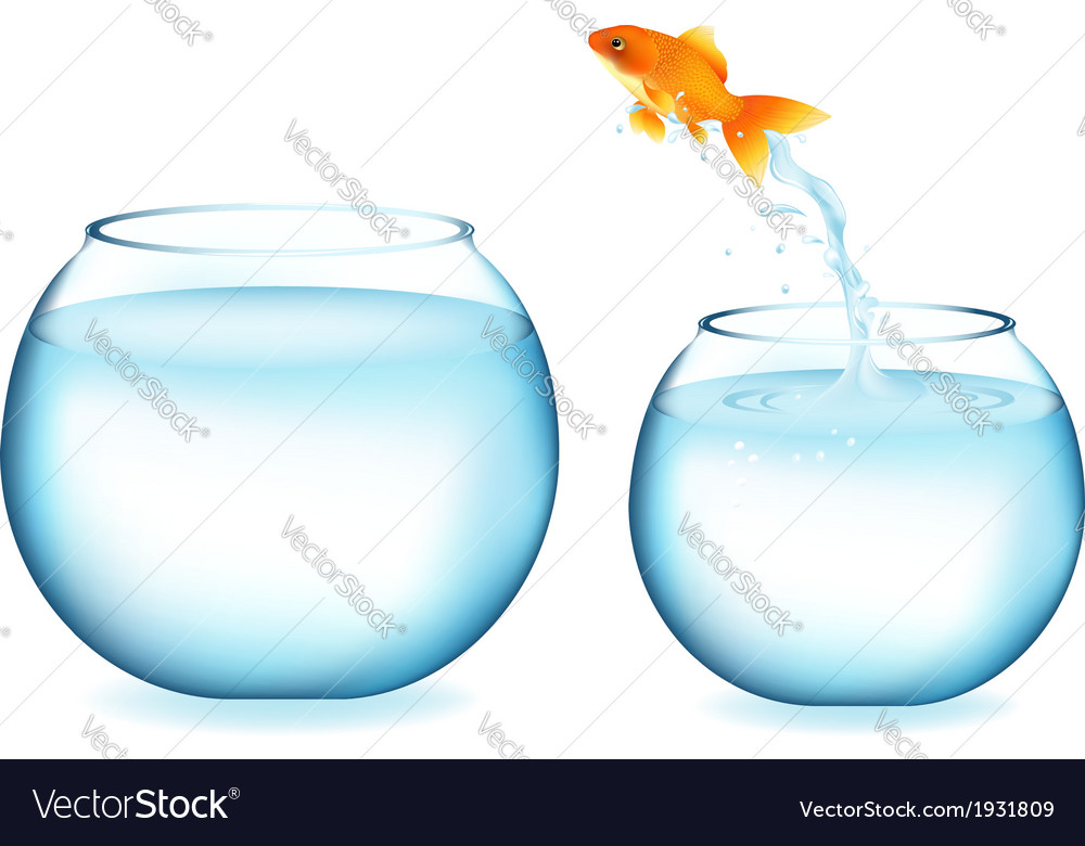 Jumping goldfish vector | Price: 1 Credit (USD $1)