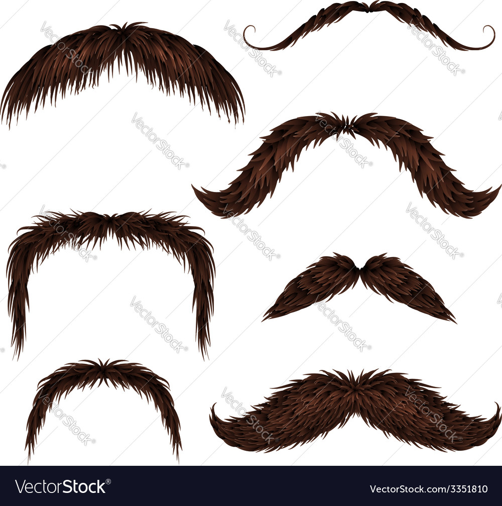 Brown different style isolated mustaches set vector | Price: 3 Credit (USD $3)