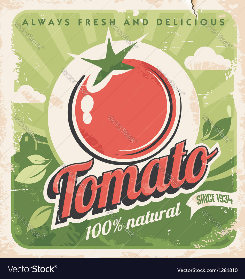 Vintage tomato poster vector | Price: 1 Credit (USD $1)