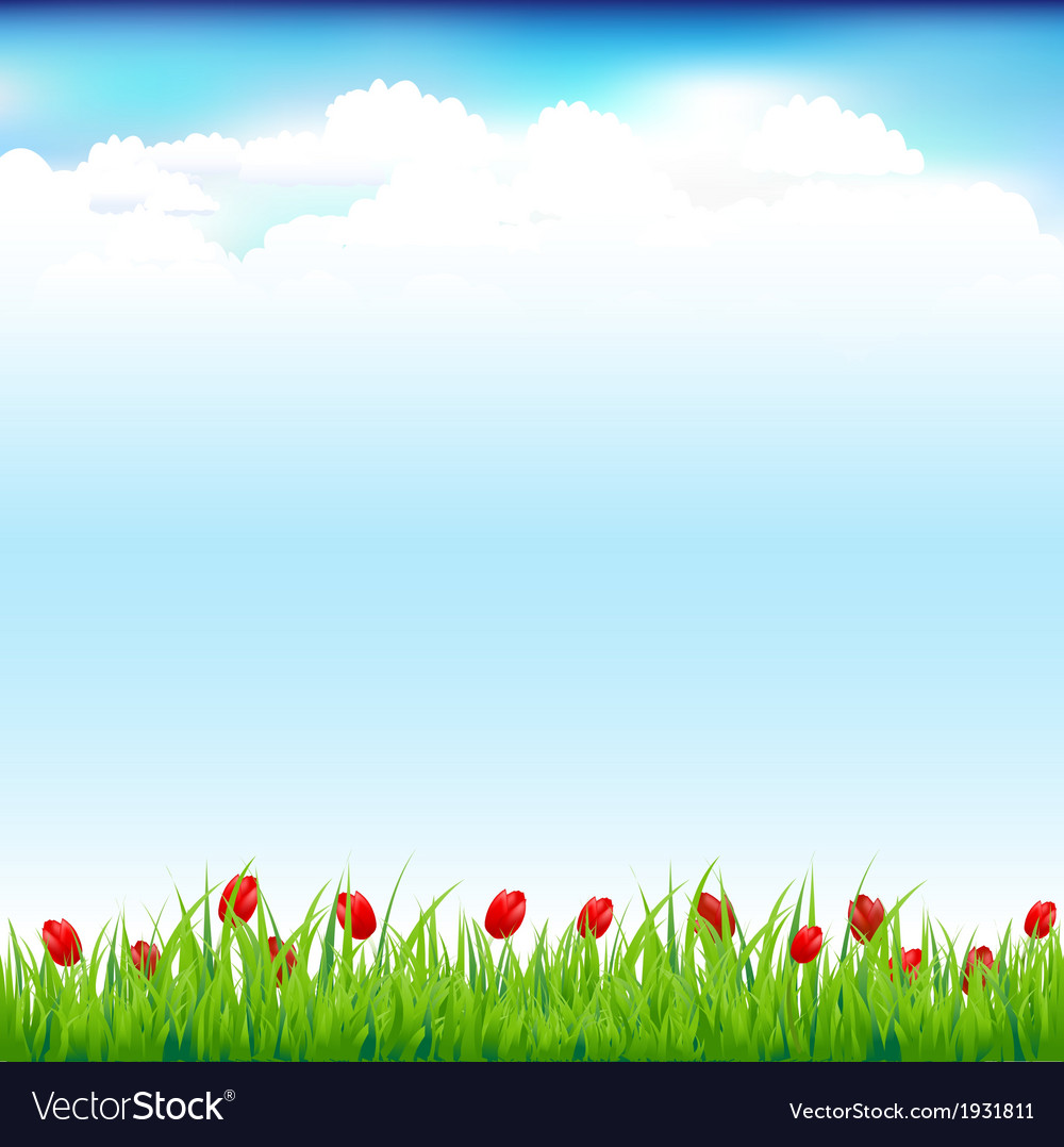 Green landscape with grass and red tulip vector   Price: 1 Credit (USD $1)