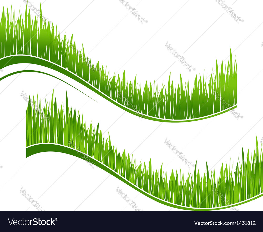 Two waves of green grass vector | Price: 1 Credit (USD $1)