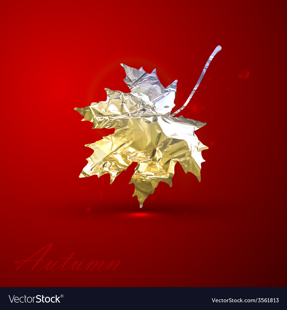A silver metallic foil maple leaf on red vector | Price: 1 Credit (USD $1)
