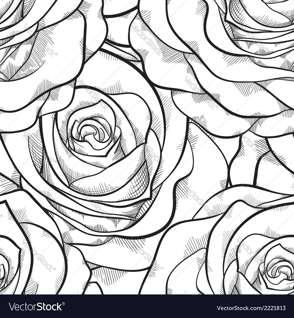 Seamless pattern in roses with contours vector | Price: 1 Credit (USD $1)