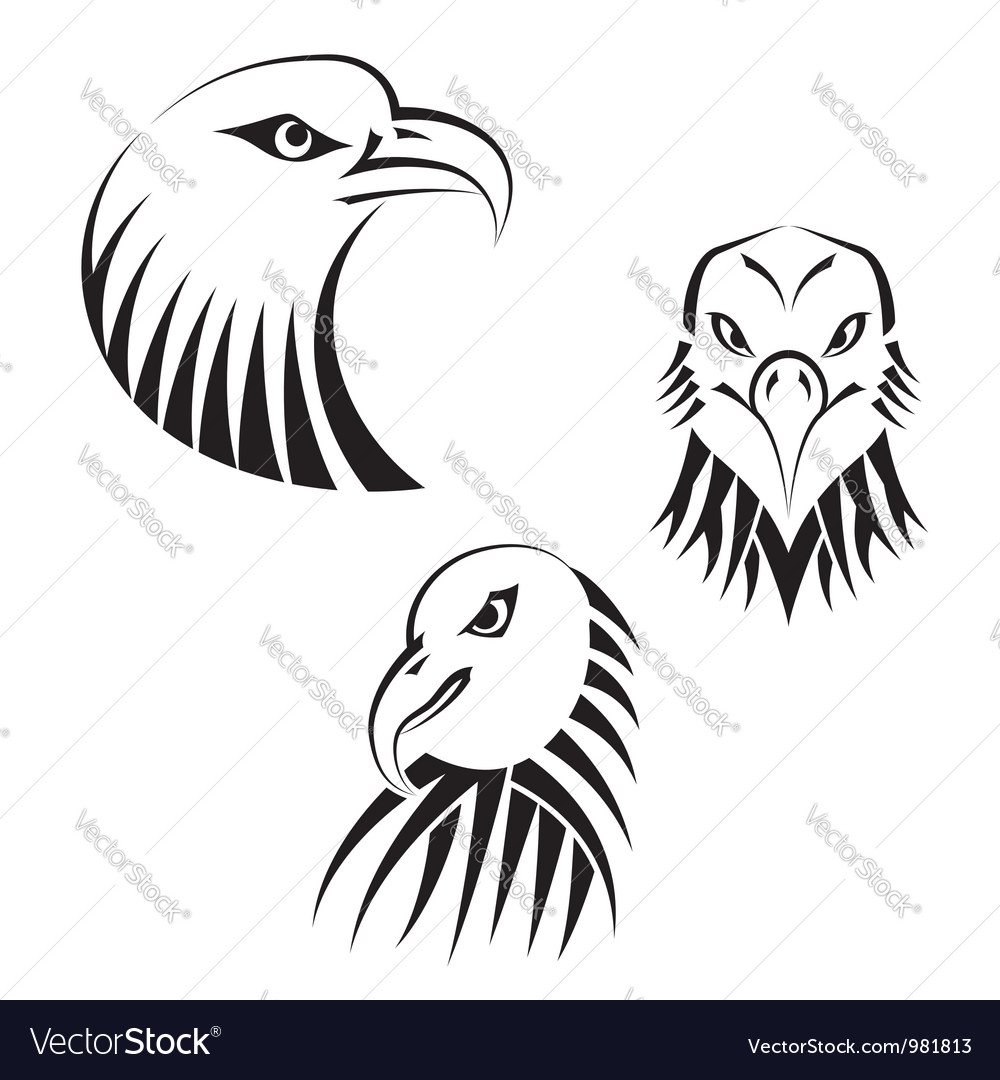 Set eagles heads vector | Price: 1 Credit (USD $1)