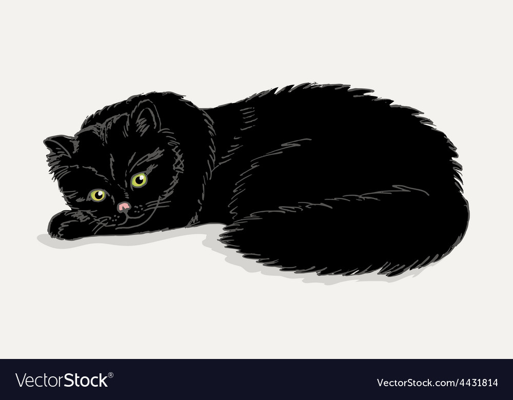 Black cat on a white background vector   Price: 1 Credit (USD $1)