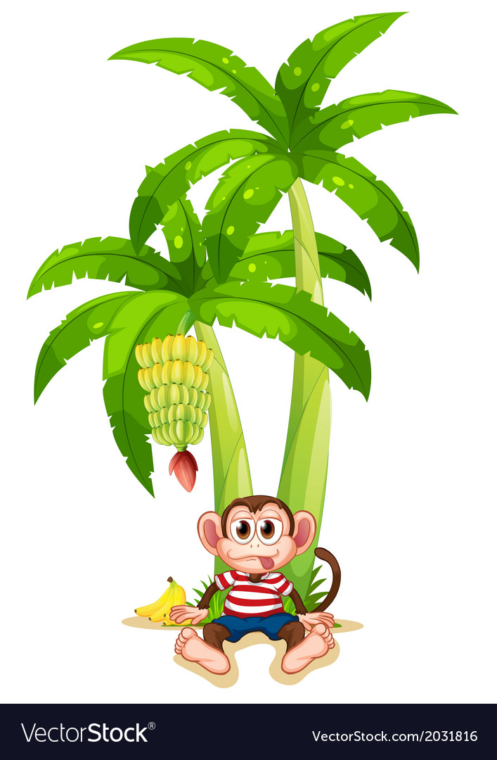 A monkey under the banana plant vector | Price: 1 Credit (USD $1)