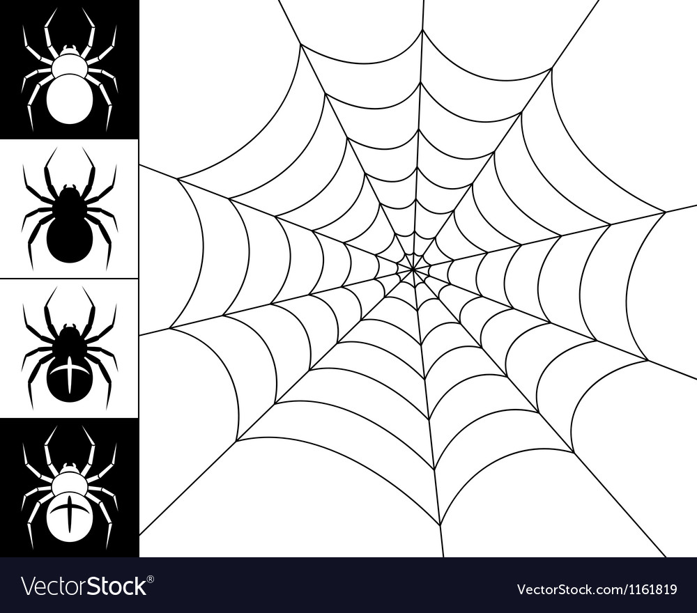 Spiders and web vector | Price: 1 Credit (USD $1)