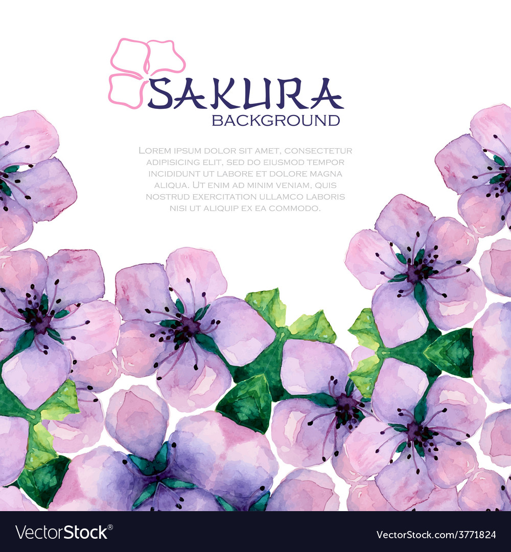 Watercolor elegant background with japanese sakura vector | Price: 1 Credit (USD $1)