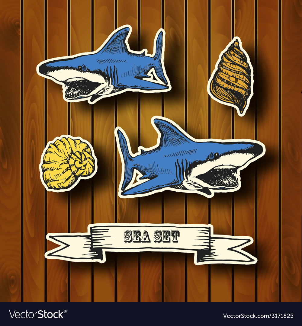 Sea collection hand drawn in vintage style vector | Price: 1 Credit (USD $1)
